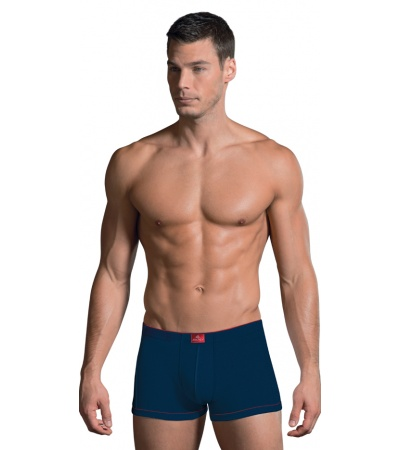 MODERN BOXER BRIEF